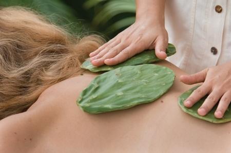 massage xương rồng